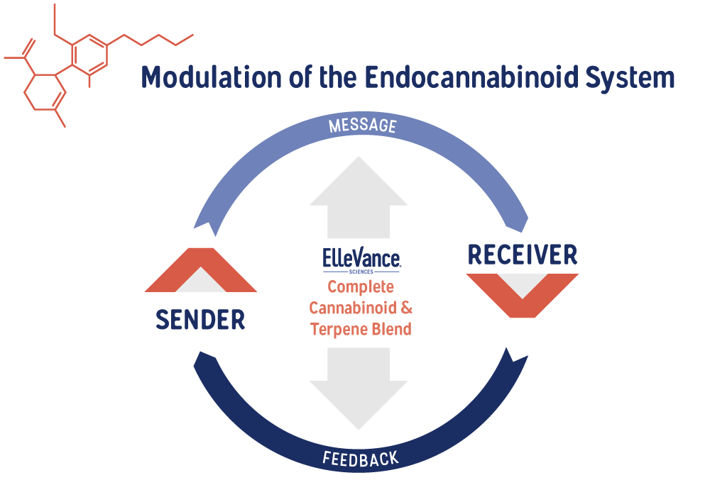 graph showing modulation of the endocannabinoid system